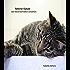 Meine Katze: Das Katzenverhalten verstehen
