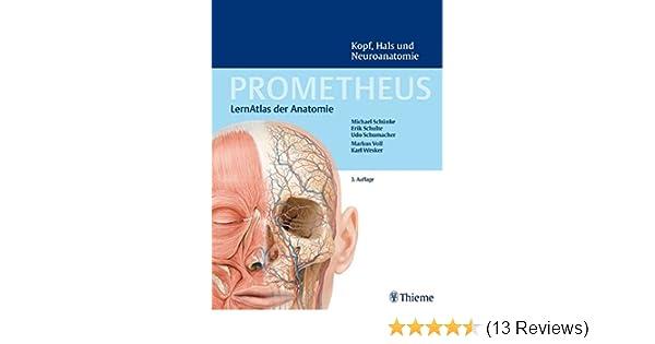 PROMETHEUS Kopf, Hals und Neuroanatomie: LernAtlas Anatomie: Amazon ...