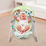 Ingenuity SmartBounce Automatic Baby Bouncer Green Gray Blue 3645