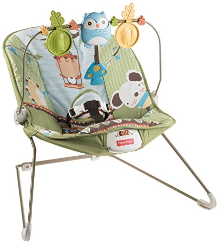 Fisher Price Grove Bouncer, Green, Multi Color