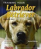 Training Your Labrador Retriever (Training Your Dog)