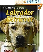 #5: Training Your Labrador Retriever (Training Your Dog)
