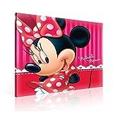 TapetoKids Leinwandbild Minnie Maus Porträt - XL - 80 x 80 cm - Komplettpaket! - fertig gerahmt und inklusive Aufhängung - hochwertige 230g/m² Leinwand auf Keilrahmen - kinderleichte Anbringung
