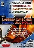DEPRESSION - BORDERLINE - ANGSTSTÖRUNG - SELBSTHASSTeil 1: Larissa zwischen Himmel und Hölle-Tagebuch der Selbstzerstörung: Das bewegende ... in die Seele einer psychisch kranken Frau