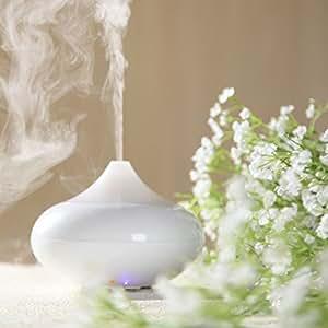 Anself Ultrasonico umidificatore Diffusore di aromi Aroma Oil diffusore ionizzatore aroma terapia Generator Aromatherapy Ufficio purificatore Mist Maker bianco 12W