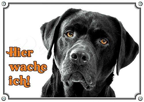 Hundeschild schwarzer Labrador Retriever - Premium Alu Schild - rostfrei, 1. DIN A5 -