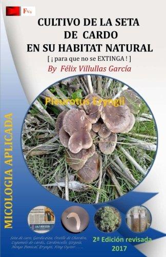 Cultivo de la Seta de Cardo en su habitat natural: Asociacion del hongo Hongo Pleurotus Eryngii y la planta Eryngium Campestre por Fvg Felix Villullas Garcia