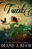 Twixt (Enchanted Outlaws Series Book 1)