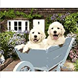 Puppies on The Pushcart - Paint by Numbers Kit per Adulti Fai da Te 21016 Decorazioni per la casa-Without Frame