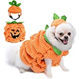 Legendog Dog Halloween Costume, Dog Pumpkin Costume with Pumpkin Hat/Creative Funny halloween Costumes for Dogs Halloween Easter Party Dress Up,M