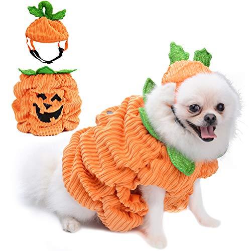 - Lächeln Halloween Kostüm