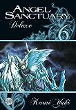 Angel Sanctuary Deluxe 6