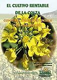 El Cultivo Rentable De La Colza Como Recurso Sostenible Del Agrodiesel