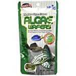 Hikari Algae Wafers [Sng] 82G 6