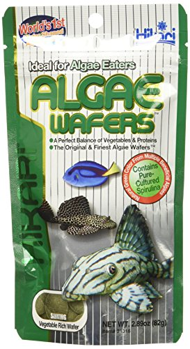 Hikari Algae Wafers [Sng] 82G 1