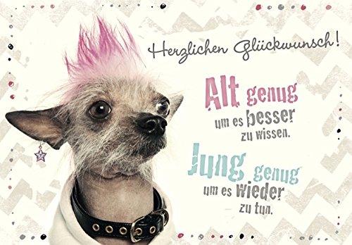 DeCoArt... Geburtstagskarte Hund Herzlichen Glückwunsch! Alt genug um es besser zu wissen. Jung genug um es wieder zu tun.