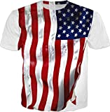 Best American Flags - 100ANB - (VIVO-FLAG-G-1-20A-P) - RIPPLE or WAVES Review