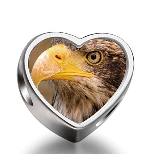 Rarelove Sterling Silver An Eagle Face Animal Heart Photo European Charm (Mens Sterling Silver Eagle)