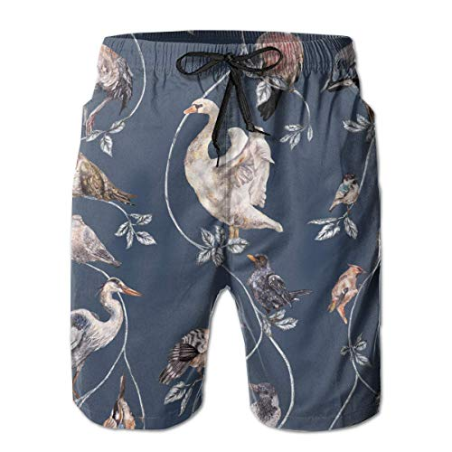 Jiger Flights of Fancy Mens Swim Trunks Quick Dry Board Shorts with Pockets Summer Beach Short with Mesh Liner£¬ XL - Mesh Cheer Shorts