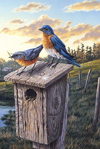 Toland Home Garden Eastern Bluebird Birdhouse Garden