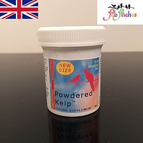 Morning Bird Kelp Seetang 28g Sprinkle für Lebensmittel Jod Vitamin Nahrungsergänzungsmittel alle Vögel Finken Kanarien Wellensittiche (Nahrungsergänzungsmittel Jod)