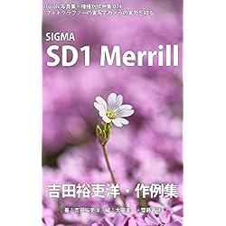 Foton Photo collection samples 024 SIGMA SD1 Merrill Yoshida Yurihiros recent works (Japanese Edition)