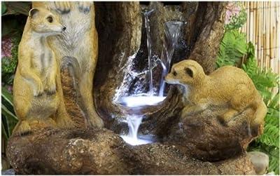 Beleuchteter Wasserfall mit Erdmännchen von Primrose - Du und dein Garten