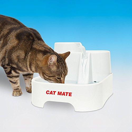 Katzentrinkbrunnen: PetMate 80850 Cat Mate Katzen Trinkbrunnen