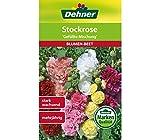 Dehner Blumen-Saatgut, Stockrose, 'Gefüllte Mischung', 5er Pack (5 x 1.5 g)