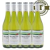 Weißwein New Zealand Sauvignon Blanc Brancott Estate trocken (6x0,75l)