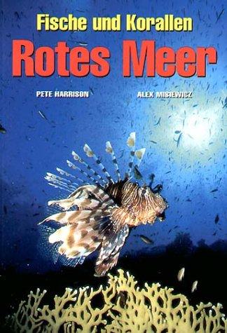 Fische und Korallen. Rotes Meer