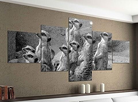Leinwandbild 5 tlg. 200cmx100cm Erdmännchen Afrika Wüste Surikate schwarz weiß Bilder Druck auf Leinwand Bild Kunstdruck mehrteilig Holz 9YA1788, 5Tlg 200x100cm:5Tlg 200x100cm