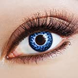 aricona Farblinsen Farbige Kontaktlinse Slinky Leopard in blau -Deckende Jahreslinsen für dunkle und helle Augenfarben ohne Stärke,Farblinsen für Karneval,Fasching,Motto-Partys und Halloween Kostüme