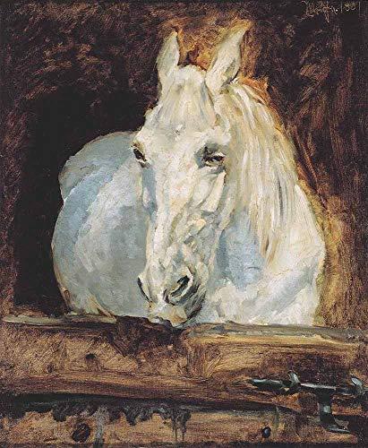 JH Lacrocon Henri de Toulouse-Lautrec - The White Horse Gazelle Leinwandbilder Reproduktionen Gerollte 50X60 cm - Tiere Gemälde Vintage Gedruckt Wandkunst