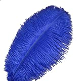 Sowder 10pcs Ostrich Feathers 12-14inch(30-35cm) for Home Wedding Decoration(royal blue)