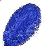 Sowder 10pcs Strauß-Federn 12-14inch (30-35cm) für Haupthochzeits-Dekoration (königliches Blau)