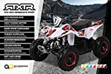 Miniquad Kinder ATV Fox XTR PREMIUM 49 cc E-Start - Tuning Engine Pocketquad 2-takt Quad Weiß/Rot ATV Pocket Quad Kinderquad Kinderfahrzeug