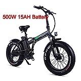 XXCY Pieghevole Bici elettrica 500 w e-Bike 20'* 4.0 Pneumatico Grasso 48v 15ah Batteria Display LCD con 5 Livelli di velocità di PAS (Nero)