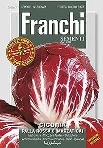 Gemüsesamen - Blattchicorée Palla Rossa 6 (Marzatica) von Franchi Sementi