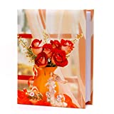 #2: Natraj Photo 100 Pocket 4 X 6 Inch Album