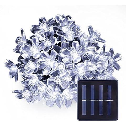 LE Cadena de luces LED solar 4300003-DW - 7m (con cable) 50 LED flores luz blanca, uso exterior, resistente al agua IP55, con panel solar y sensor de luz