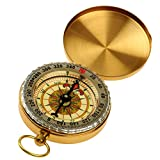 Best Hiking Compass - Homyl Vintage Portable Charm Brass Pocket Compass Review