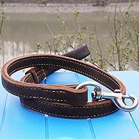SANVINGLE Hochwertiges Leder Pet zugseil Hundeleine Hundeleine Hundeleine Doggy Seil tibetisch Dogge