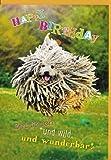 Geburtstagskarte Frech Wild Wunderbar - Fliegender Hund