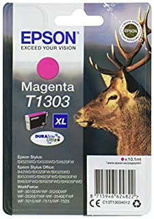 Epson Ink Cart T130 Cartouche d'encre XL Si (B003MVGWBA) | Amazon Products