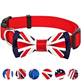 Blueberry Pet Pack of 1 National Pride Handmade - Best Reviews Guide