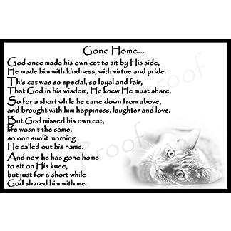 Cat bereavement memorial Flexible Fridge Magnet Sympathy Gift - Gone Home (male) Cat bereavement memorial Flexible Fridge Magnet Sympathy Gift – Gone Home (male) 51A4Pg2ez1L