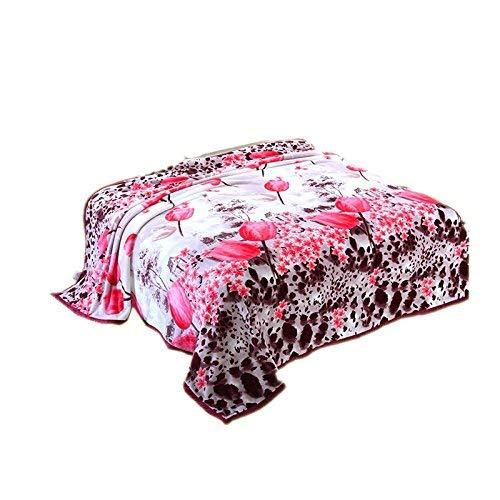 FuweiEncore Frettchen Flauschige duffet Dicke Daunendecke Korallendecke Nachmittagsschlaf Abdeckung der Klimaanlage Decken und Bettwäsche Studenten Kinder (Bettwäsche-daunendecke-abdeckung)