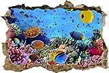 wandmotiv24 3D-Wandsticker Korallenriff mit Fischen Aufkleber Mauerdurchbruch M0480 Design 01 - mittel
