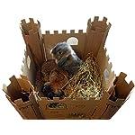 Smartbedz Cardboard Pet Castle 5